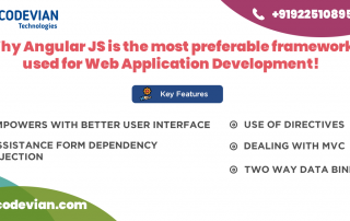 Angular js for web application development